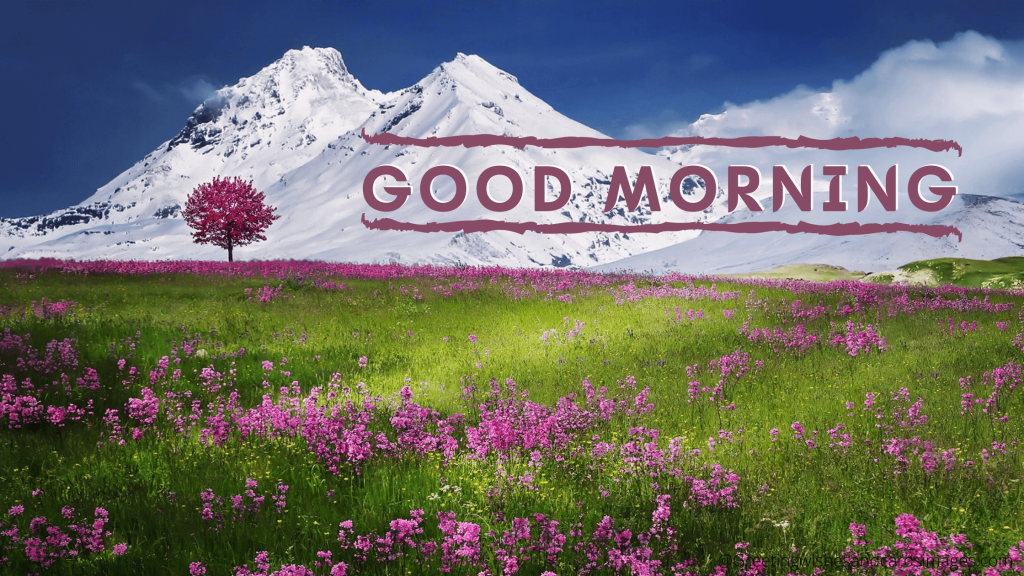 Flowers Good Morning Quotes