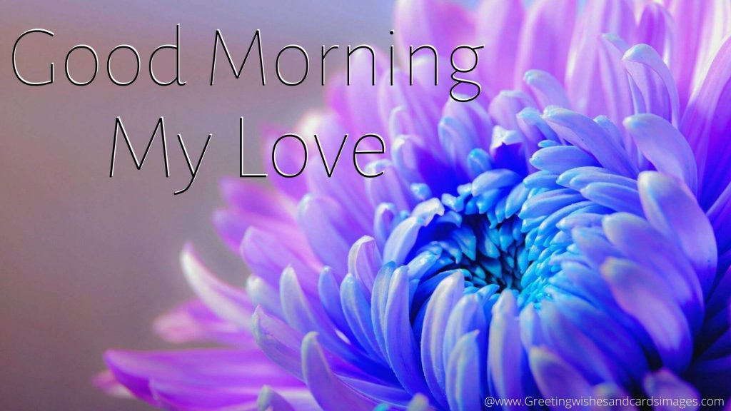 Good Morning Pics For Lover With Flowers