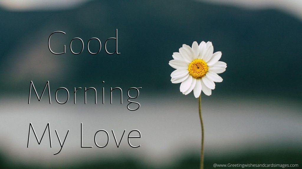 Good Morning Pics For Lover